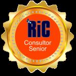 consultor senior